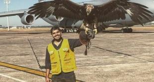 El aeropuerto Silvio Pettirossi dejó de contar con el águila de seguridad desde inicios de este año.