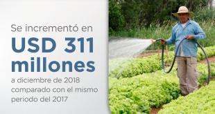 Al mes de diciembre del 2018, la participación fue del 57%, es decir, 57 de cada 100 guaraníes fueron invertidos en programas sociales.