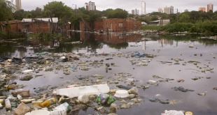 Cada crecida del río Paraguay arrastra una gran cantidad de basuras.