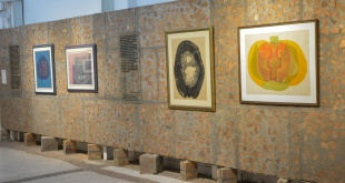 En la exposición se pueden apreciar una gran variedad de cuadros.