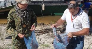 Desde el MADES señalaron que posiblemente el destino de los productos confiscados eran los puertos de la rivera del Río Paraguay.