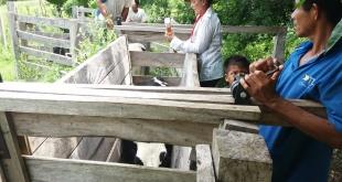 Hasta el momento suman más de 300 personas capacitadas en 8 comunidades indígenas de los departamentos Caaguazú, Caazapá y Guairá.