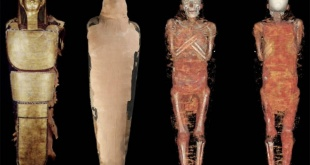 Un escaneo reveló que, antes de ser momia, habría sido oculista.