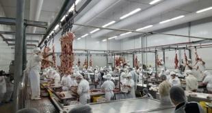 La exportación de la carne bovina también experimentó una importante caída.
