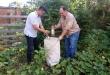 La eliminación de criaderos es fundamental para hacer frente a las enfermedades transmitidas por mosquitos.