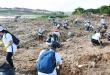 Una gran cantidad de jóvenes y militares trabajó para limpiar el arroyo Mburicaó en Asunción.