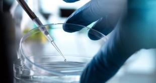 Una vacuna reduce el virus latente del VIH y abre nuevas vías de tratamiento.