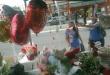 Las flores y los peluches siguen siendo una de las opciones preferidas por el día de San Valentín.