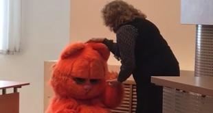 La profesora acarició y elogió al gato que se presentó en su clase.