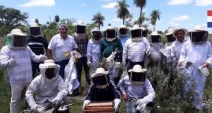 Un total de 34 productores de abejas, de los distritos de San Ignacio y Santa María, fueron instruidos.