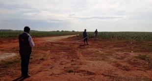 Se constató que parte de la parcela de producción no contaba con la franja de protección de 100 metros libres de cultivo establecida por Ley.