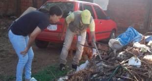 Funcionarios del Senepa realizaron eliminación de criaderos.