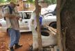 Durante las visitas realizadas por funcionarios del Senepa hallan gran cantidad de criaderos.