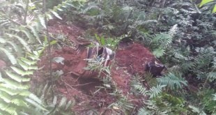 El hallazgo se produjo cerca de las 12:00 horas aproximadamente, por funcionarios de la Administración Nacional de Electricidad (ANDE). Foto: Gentileza.