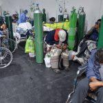 """Cepa andina clasificada como """"de interés"""" por expansión en A. Latina"""