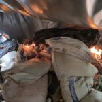 En operativo antidrogas incautan 6 toneladas de marihuana